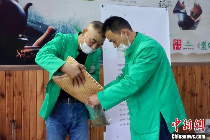 2020年杭州举办西湖龙井茶炒茶王大赛 32位炒茶高手过招